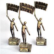 Nagroda firmy Welmax, 2012