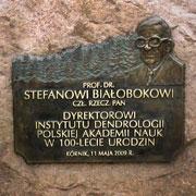 Stefan Białobok - Kurnik